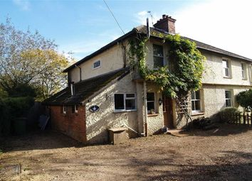 Thumbnail 3 bed semi-detached house for sale in Rose Cottages, Hammer, Haslemere, Surrey