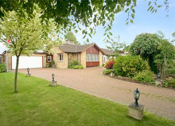 Thumbnail 4 bed detached bungalow for sale in The Butts, Aynho, Banbury, Northamptonshire