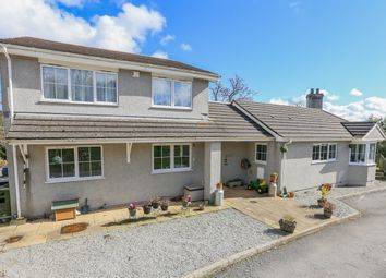 Thumbnail 4 bed detached house for sale in Stokelake, Chudleigh, Newton Abbot