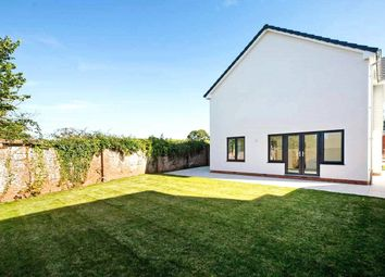 Thumbnail 4 bedroom detached house for sale in Mulligan Drive, Exeter