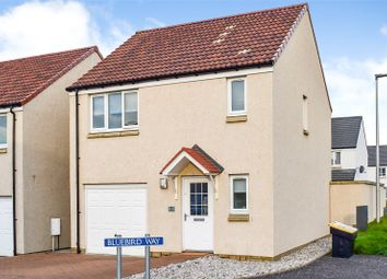 Thumbnail 3 bed detached house for sale in Bluebird Way, Falkirk