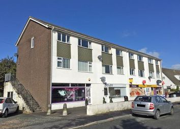 Thumbnail Property for sale in St. Annes Road, Plymouth
