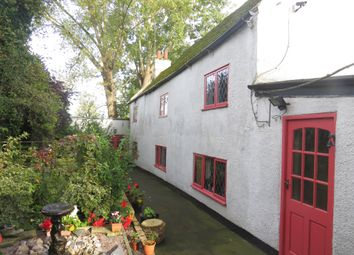 Thumbnail 3 bedroom detached house for sale in Crab Marsh, Wisbech