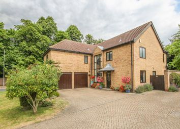 Thumbnail 5 bedroom detached house for sale in Swan Grove, Exning, Newmarket