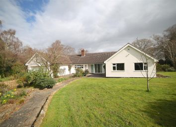 Thumbnail 4 bed bungalow for sale in Old Coppice, Lyth Hill, Lyth Bank, Shrewsbury