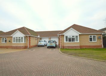 Thumbnail 3 bed bungalow for sale in Pirie Road, West Bergholt, Colchester
