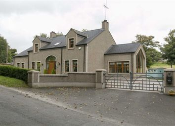 Thumbnail 5 bed detached house for sale in Dunmore Road, Ballynahinch, Down