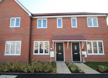 Thumbnail 2 bed property for sale in Woodlands Avenue, Trimley St. Mary, Felixstowe