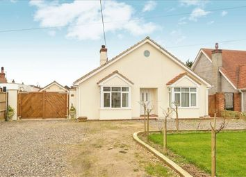 Thumbnail 4 bedroom detached bungalow for sale in Dereham Road, Watton, Thetford, Norfolk