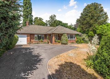 Thumbnail 4 bed bungalow to rent in Twinoaks, Cobham