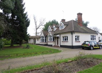 Thumbnail 4 bedroom bungalow to rent in Epping Road, Roydon, Essex