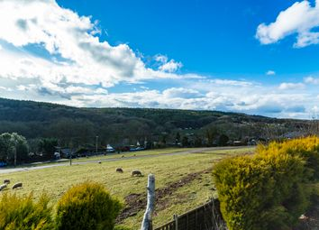 Thumbnail 4 bed mobile/park home for sale in Hill Farm, Northwood Lane, Bewdley