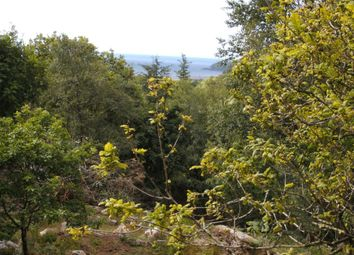 Thumbnail Land for sale in Lodges & Plots At Drumwhinny, Near Colvend