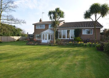 Thumbnail 5 bed detached house for sale in Ferry Road, Old Felixstowe, Felixstowe