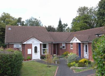 Thumbnail 2 bedroom terraced bungalow to rent in Ranelagh Road, Malvern