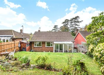 Thumbnail 2 bed bungalow for sale in Sandhurst Road, Tunbridge Wells, Kent