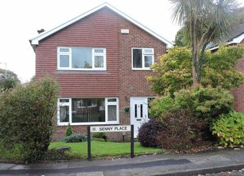 Thumbnail 4 bed detached house for sale in Senny Place, Cwmrhydyceirw, Swansea