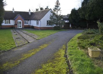 Thumbnail 3 bed bungalow to rent in Glen Rise, Leicester
