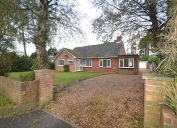 Thumbnail 3 bed detached bungalow to rent in Sandy Lane, St. Ives, Ringwood