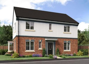 "Thumbnail 4 bed detached house for sale in ""Stevenson"" at Sophia Drive, Great Sankey, Warrington"