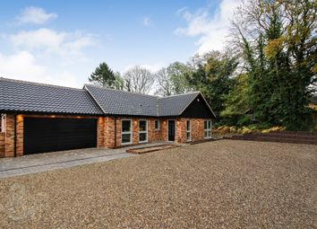 Thumbnail 4 bed detached bungalow for sale in Mill Road, Ashby St. Mary, Norwich