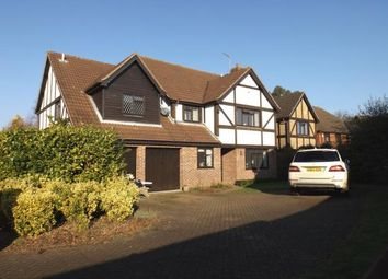 Thumbnail 5 bed detached house for sale in Thorpe End, Norwich, Norfolk
