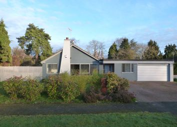 Thumbnail 4 bed detached bungalow for sale in Matching Green, Matching, Essex