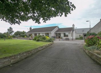 Thumbnail 4 bedroom terraced bungalow for sale in 15, Longlands Road, Newtownards