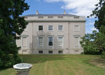 Thumbnail 2 bed flat for sale in Fantastic 2 Bed Country House Apartment, Kenn, Exeter