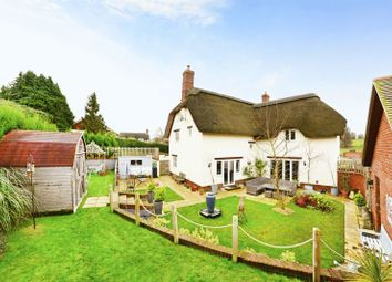 Thumbnail 4 bed detached house for sale in Milborne St. Andrew, Blandford Forum