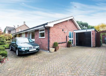 Thumbnail 4 bed detached bungalow for sale in Acacia Avenue, Hook Heath, Woking