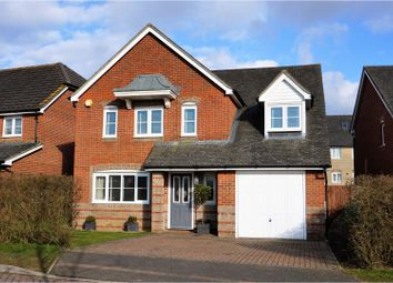 Thumbnail 5 bed detached house for sale in Dorset Crescent, Basingstoke