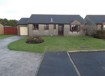 Thumbnail 3 bed detached bungalow to rent in Pool, Redruth, Cornwall