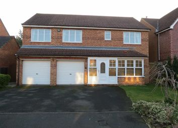 Thumbnail 4 bed detached house to rent in Greenwood Close, The Pastures, Washington