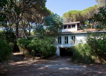 Thumbnail 5 bed villa for sale in Castiglione Della Pescaia, Castiglione Della Pescaia, Grosseto, Tuscany, Italy