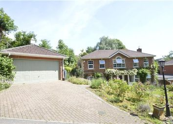 Thumbnail 4 bed detached house for sale in Broad Buckler, St Leonards-On-Sea, East Sussex