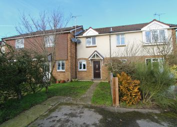 Thumbnail 2 bed terraced house to rent in Wheatear Drive, Petersfield