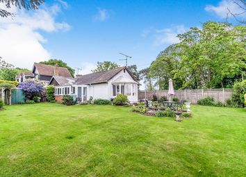 Thumbnail 2 bed bungalow for sale in Firs Lane, Hollingbourne, Maidstone