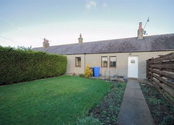 Thumbnail 2 bedroom cottage to rent in Norham, Berwick-Upon-Tweed
