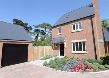 Thumbnail 4 bed detached house to rent in North Street, Raunds, Wellingborough