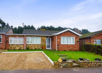 Thumbnail 4 bedroom detached bungalow for sale in The Firs, Lakenheath, Brandon