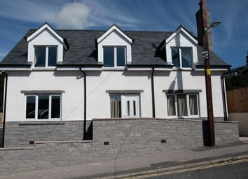 Thumbnail 3 bed detached house for sale in Alpine Street, Dalbeattie