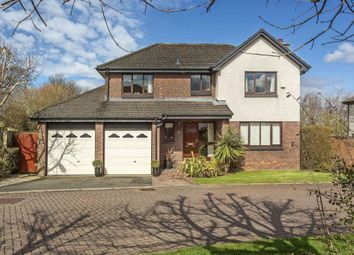 Thumbnail 4 bedroom property for sale in 16 Netherbank View, Liberton
