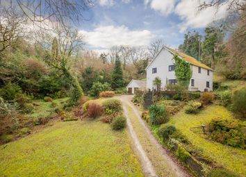 Thumbnail 4 bed detached house for sale in Pethybridge, Lustleigh, Newton Abbot