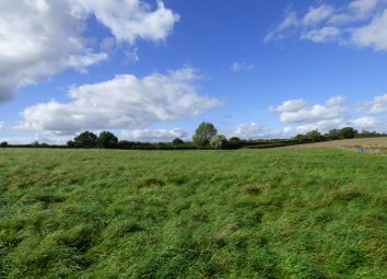 Thumbnail Farm for sale in Swineshead Road, Riseley