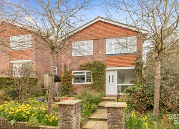 Walnut Close, Brighton BN1. 4 bed detached house for sale
