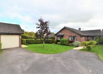 Thumbnail 3 bed detached bungalow for sale in Collipriest View, Ashley, Tiverton