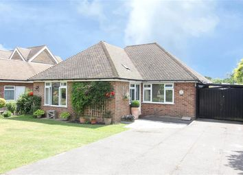 Thumbnail 2 bed detached bungalow for sale in Station Road, Northiam, Rye