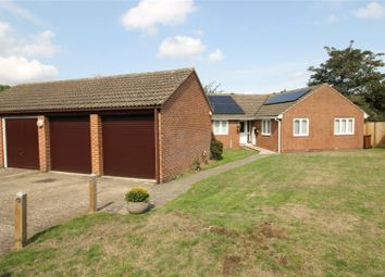 Thumbnail 4 bed bungalow for sale in Primrose Close, Chatham, Kent