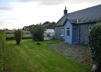 Thumbnail 3 bed cottage to rent in Coupar Angus, Blairgowrie